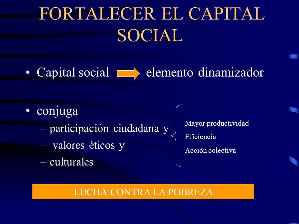 Capital social elemento dinamizador conjuga –participación ciudadana y – valores éticos y –culturales Mayor productividad Eficiencia Acción colectiva