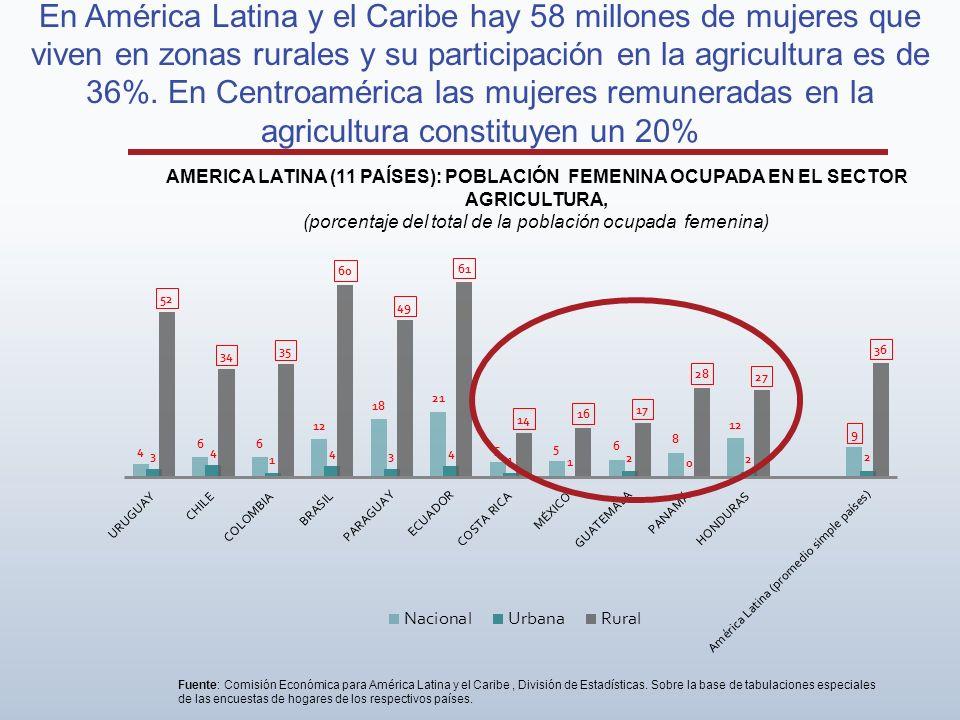 En América Latina y el Caribe hay 58 millones de mujeres que viven en zonas rurales y su participación en la agricultura es de 36%. En Centroamérica l
