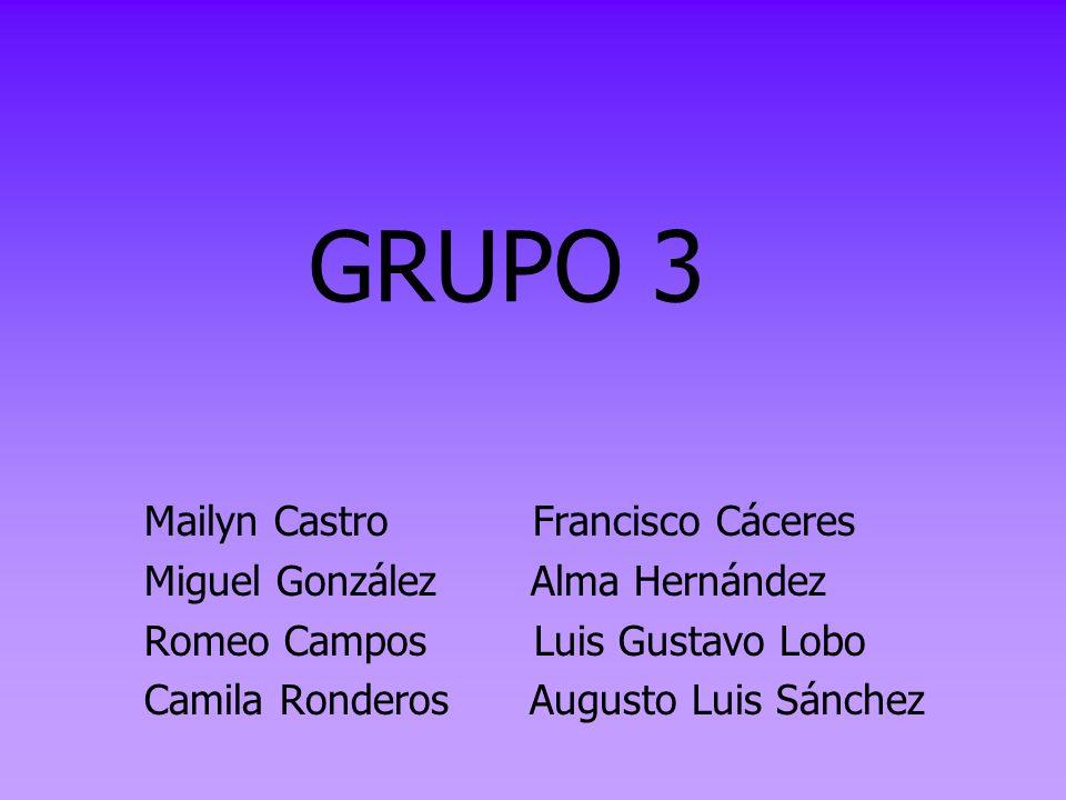 GRUPO 3 Mailyn Castro Francisco Cáceres Miguel González Alma Hernández Romeo Campos Luis Gustavo Lobo Camila Ronderos Augusto Luis Sánchez