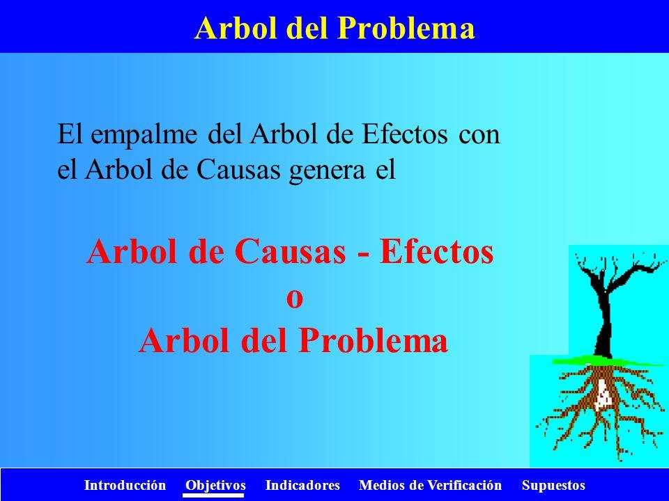 Introducción Objetivos Indicadores Medios de Verificación Supuestos Arbol del Problema El empalme del Arbol de Efectos con el Arbol de Causas genera e