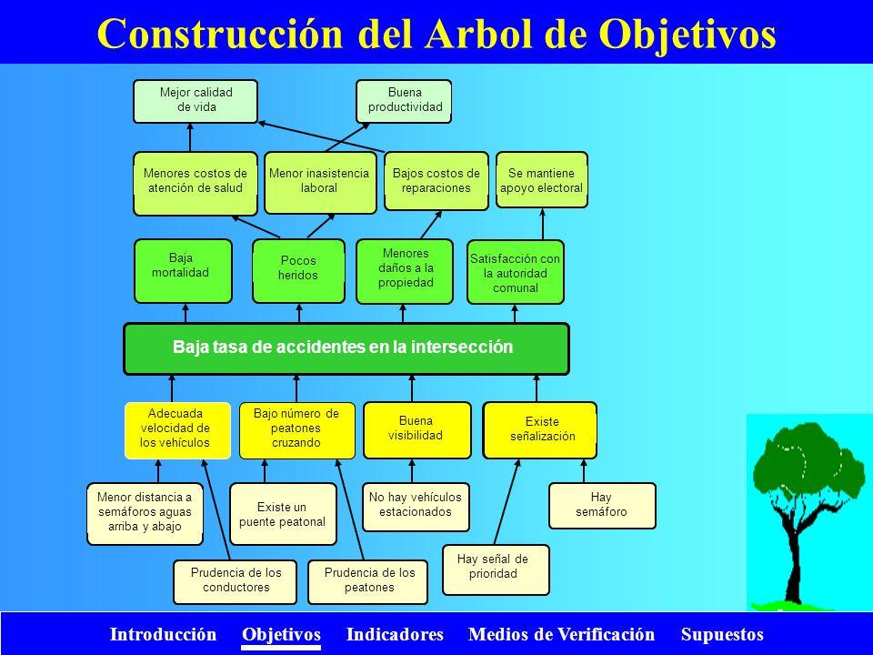 Introducción Objetivos Indicadores Medios de Verificación Supuestos Construcción del Arbol de Objetivos Alta mortalidad Grandes daños a la propiedad D