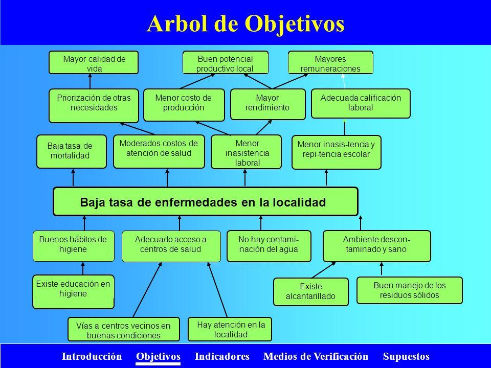 Introducción Objetivos Indicadores Medios de Verificación Supuestos Baja tasa de enfermedades en la localidad Arbol de Objetivos Baja tasa de mortalid