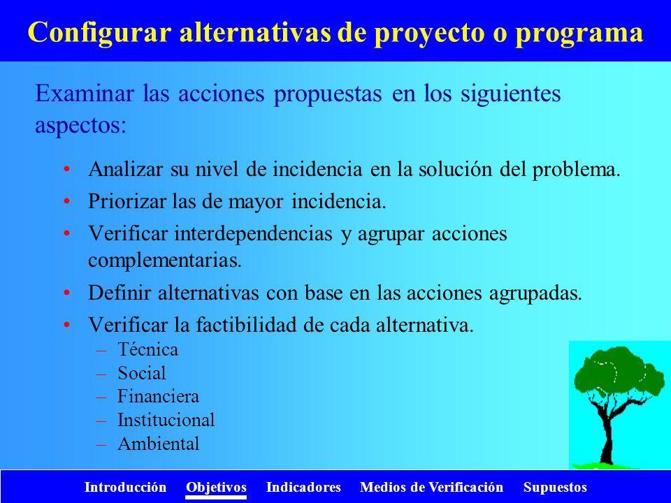 Introducción Objetivos Indicadores Medios de Verificación Supuestos Configurar alternativas de proyecto o programa Analizar su nivel de incidencia en