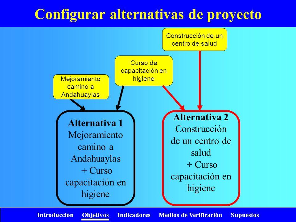 Introducción Objetivos Indicadores Medios de Verificación Supuestos Curso de capacitación en higiene Mejoramiento camino a Andahuaylas Construcción de