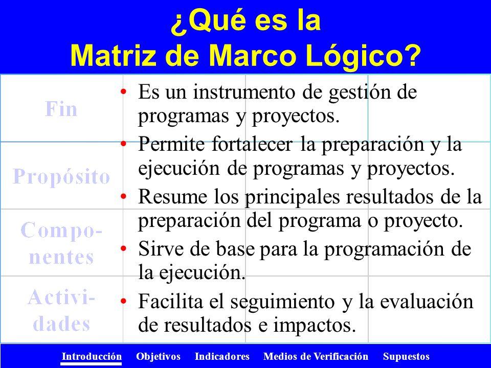 Introducción Objetivos Indicadores Medios de Verificación Supuestos Árbol del Problema y Árbol de Objetivos Se utiliza en la preparación de proyectos o programas.