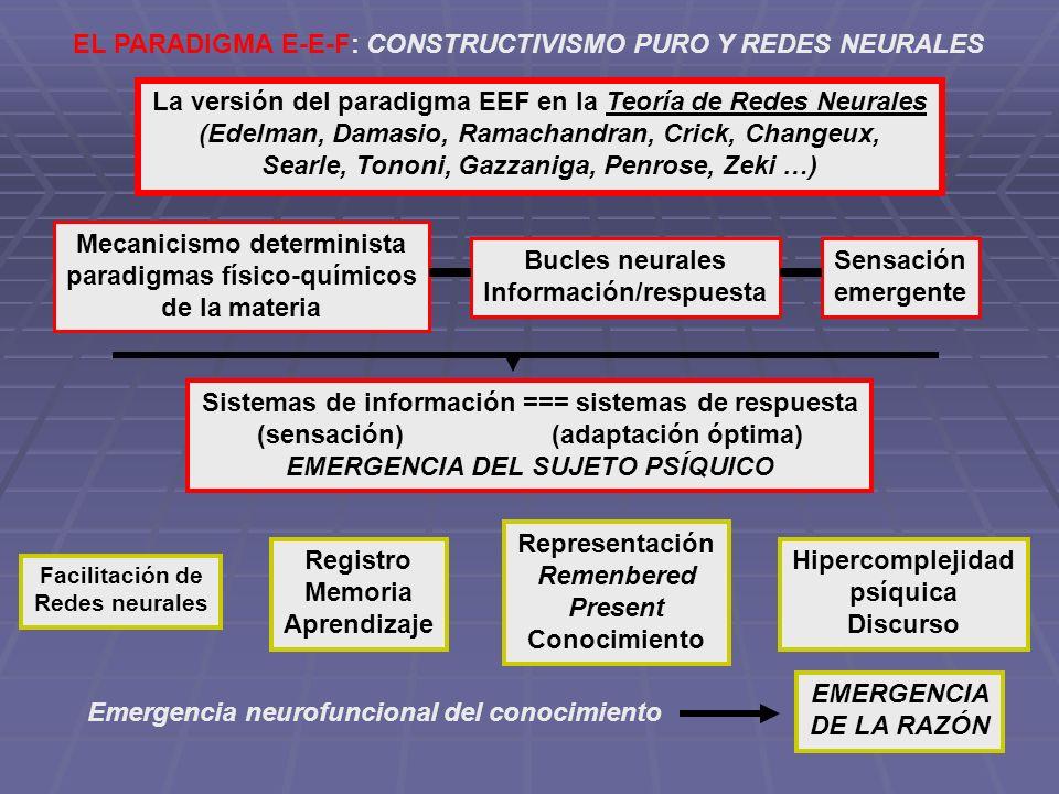 EL PARADIGMA E-E-F: CONSTRUCTIVISMO PURO Y REDES NEURALES La versión del paradigma EEF en la Teoría de Redes Neurales (Edelman, Damasio, Ramachandran,