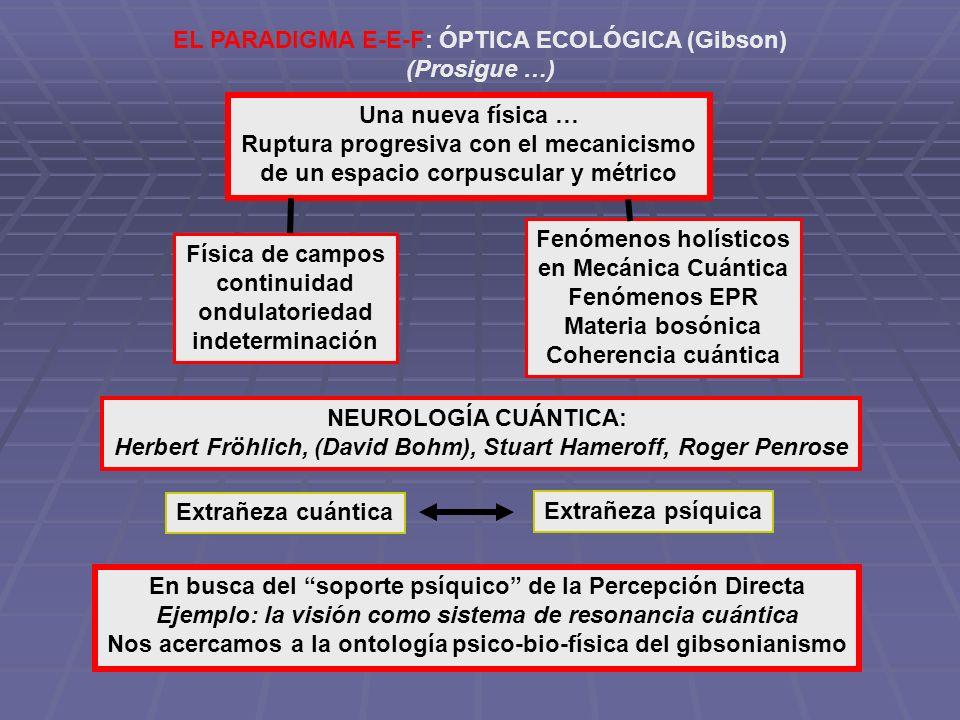 EL PARADIGMA E-E-F: ÓPTICA ECOLÓGICA (Gibson) (Prosigue …) Una nueva física … Ruptura progresiva con el mecanicismo de un espacio corpuscular y métric