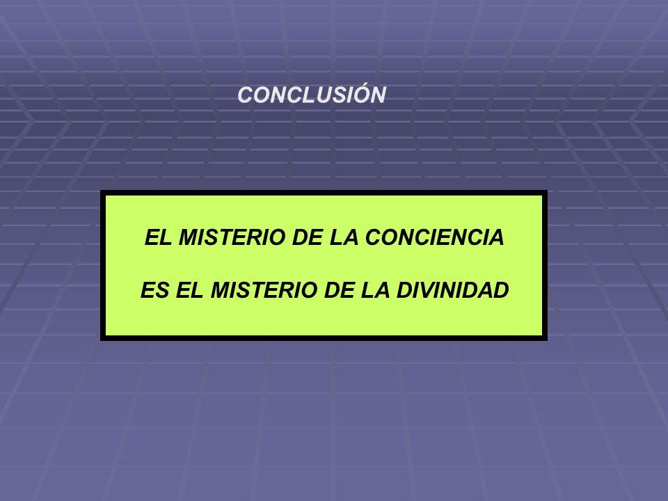 CONCLUSIÓN EL MISTERIO DE LA CONCIENCIA ES EL MISTERIO DE LA DIVINIDAD