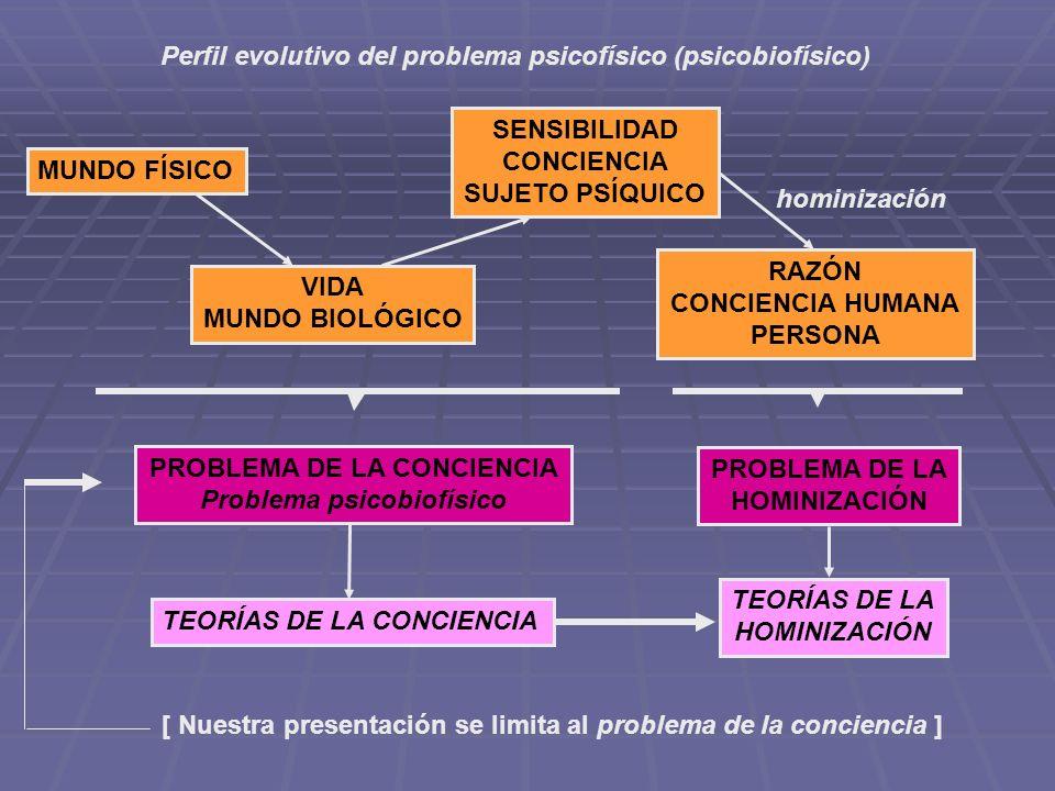 Perfil evolutivo del problema psicofísico (psicobiofísico) MUNDO FÍSICO VIDA MUNDO BIOLÓGICO SENSIBILIDAD CONCIENCIA SUJETO PSÍQUICO RAZÓN CONCIENCIA