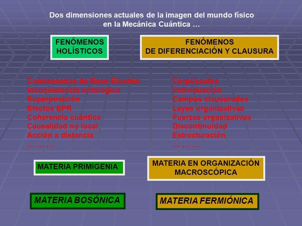 Dos dimensiones actuales de la imagen del mundo físico en la Mecánica Cuántica … FENÓMENOS HOLÍSTICOS FENÓMENOS DE DIFERENCIACIÓN Y CLAUSURA Condensad