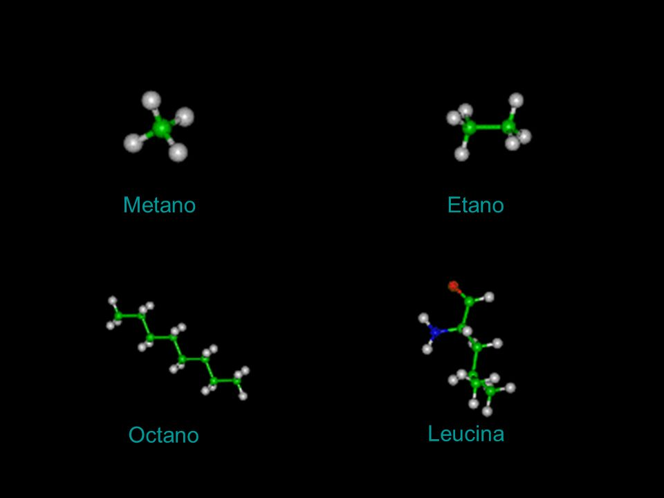 MetanoEtano Octano Leucina