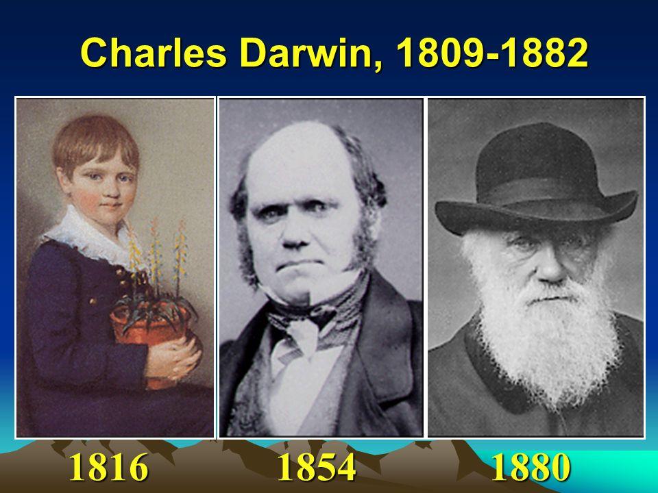 Charles Darwin, 1809-1882 181618541880