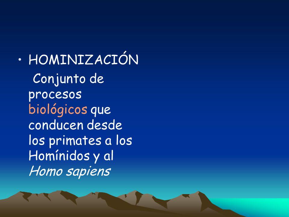2. HUMANIZACIÓN POSTURAS EMERGENTISTAS