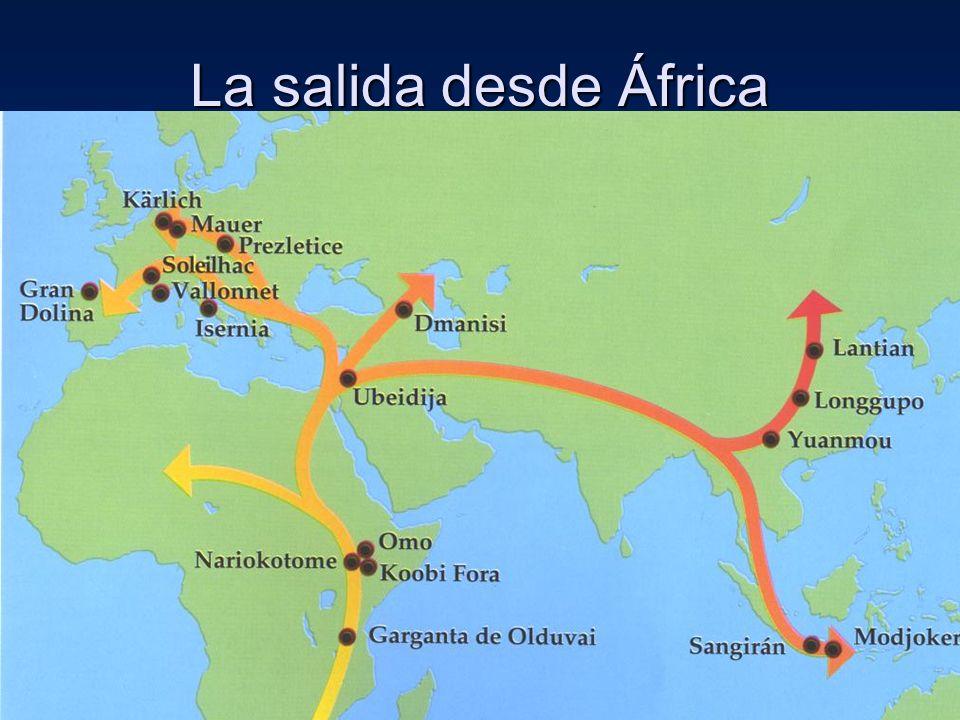 La salida desde África