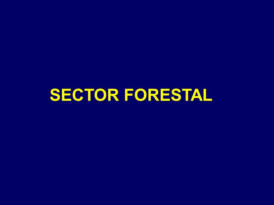NUESTROS RECURSOS NATURALES SE ESTÁN AGOTANDO : 24% de bosques templados y 44% de selvas se han perdido.