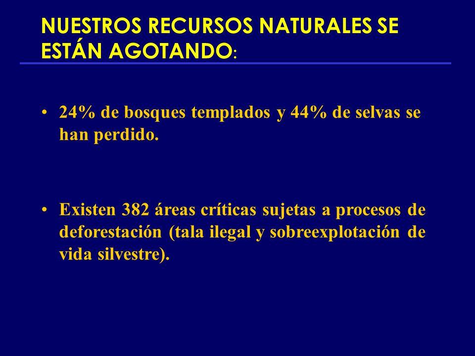 NUESTROS RECURSOS NATURALES SE ESTÁN AGOTANDO : 24% de bosques templados y 44% de selvas se han perdido. Existen 382 áreas críticas sujetas a procesos