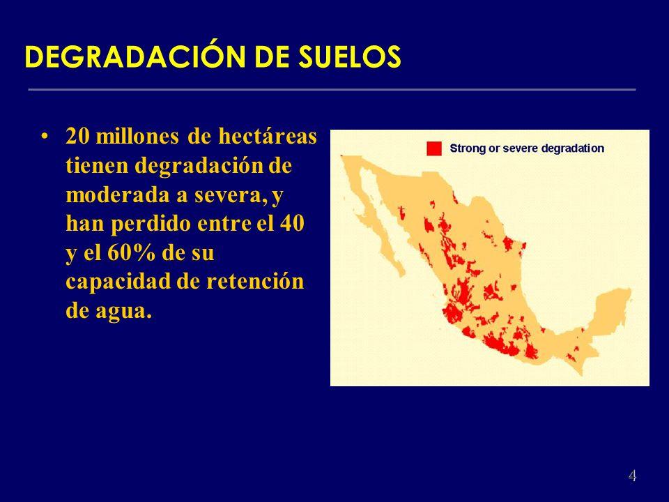 20 millones de hectáreas tienen degradación de moderada a severa, y han perdido entre el 40 y el 60% de su capacidad de retención de agua. DEGRADACIÓN