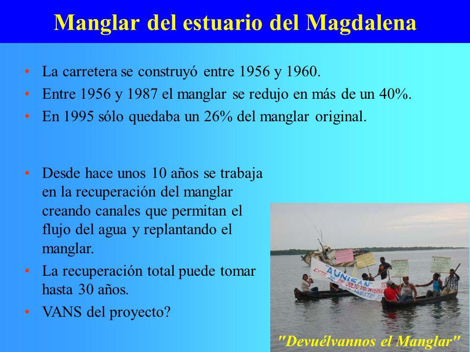 Manglar del estuario del Magdalena La carretera se construyó entre 1956 y 1960. Entre 1956 y 1987 el manglar se redujo en más de un 40%. En 1995 sólo
