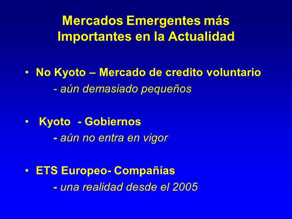 Mercados Emergentes más Importantes en la Actualidad No Kyoto – Mercado de credito voluntario - aún demasiado pequeños Kyoto - Gobiernos - aún no entra en vigor ETS Europeo- Compañías - una realidad desde el 2005