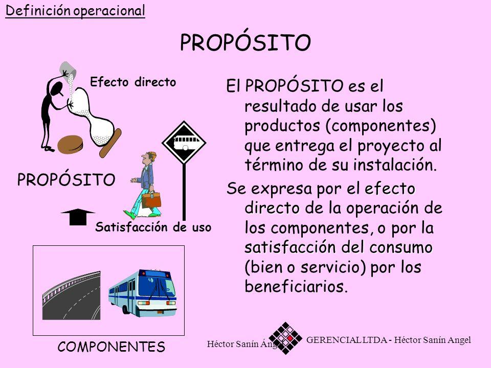 Héctor Sanín Ángel PROPÓSITO El PROPÓSITO es el resultado de usar los productos (componentes) que entrega el proyecto al término de su instalación. Se