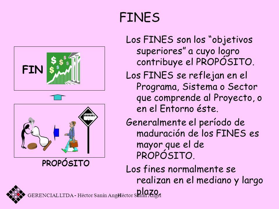 Héctor Sanín Ángel FINES Los FINES son los objetivos superiores a cuyo logro contribuye el PROPÓSITO. Los FINES se reflejan en el Programa, Sistema o