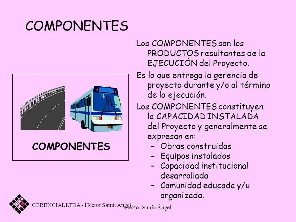 Héctor Sanín Ángel COMPONENTES Los COMPONENTES son los PRODUCTOS resultantes de la EJECUCIÓN del Proyecto. Es lo que entrega la gerencia de proyecto d