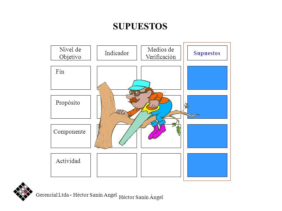 Héctor Sanín Ángel Medios de Verificación SupuestosIndicador Fin Propósito Componente Actividad Nivel de Objetivo SUPUESTOS Gerencial Ltda - Héctor Sa