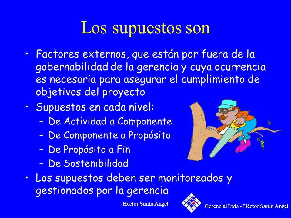 Héctor Sanín Ángel Los supuestos son Factores externos, que están por fuera de la gobernabilidad de la gerencia y cuya ocurrencia es necesaria para as