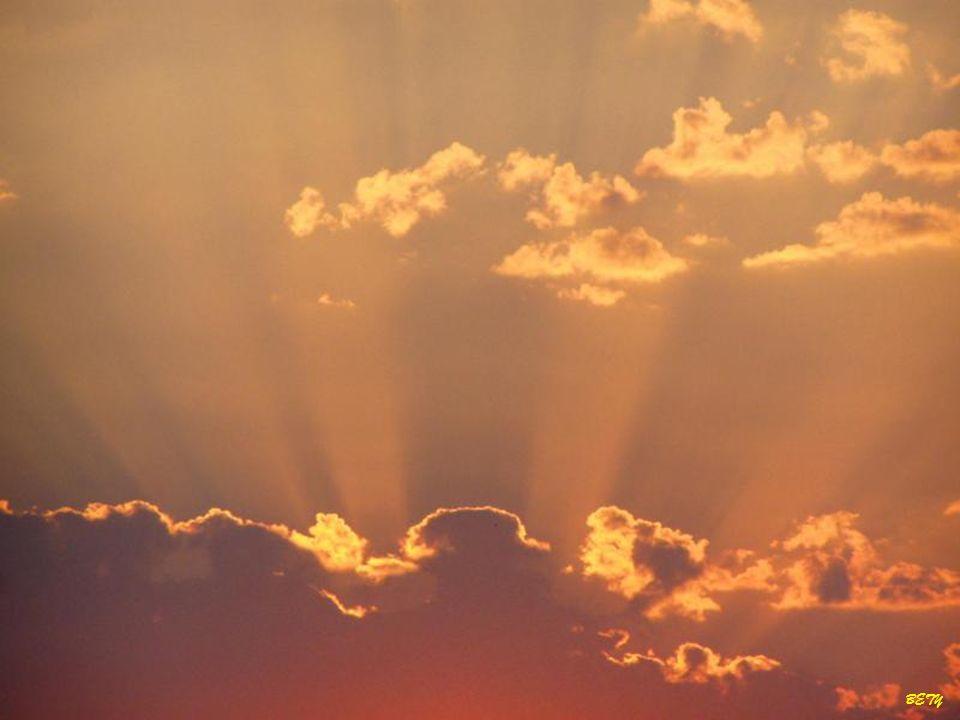 La vocación sólo se explica por el amor gratuito, personal y único que Dios muestra hacia quien llama.