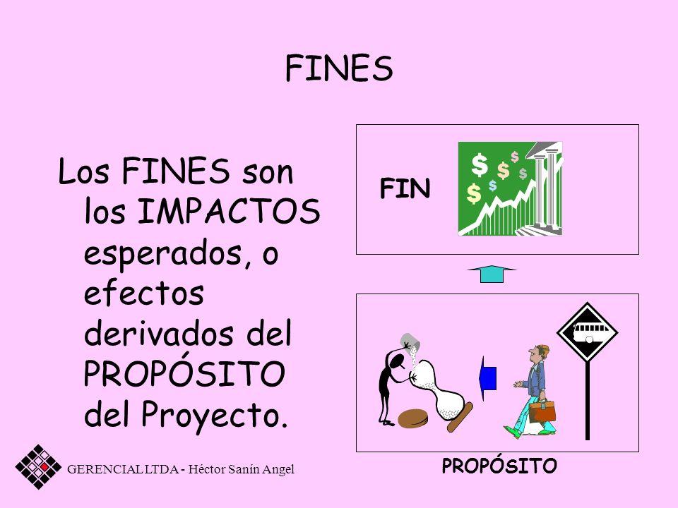 FINES Los FINES son los IMPACTOS esperados, o efectos derivados del PROPÓSITO del Proyecto. GERENCIAL LTDA - Héctor Sanín Angel FIN PROPÓSITO