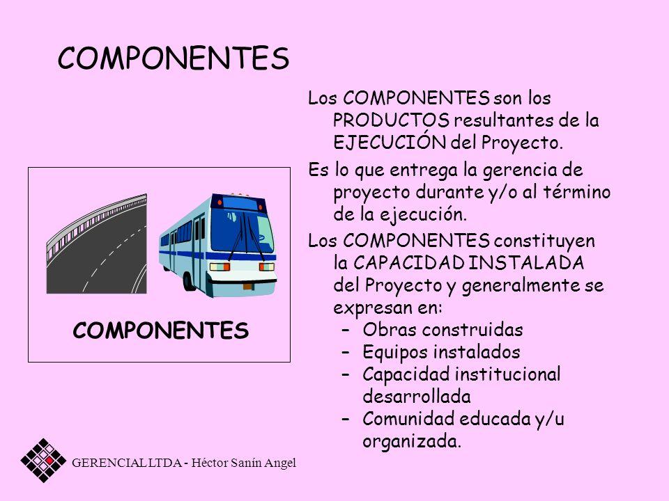 COMPONENTES Los COMPONENTES son los PRODUCTOS resultantes de la EJECUCIÓN del Proyecto. Es lo que entrega la gerencia de proyecto durante y/o al térmi