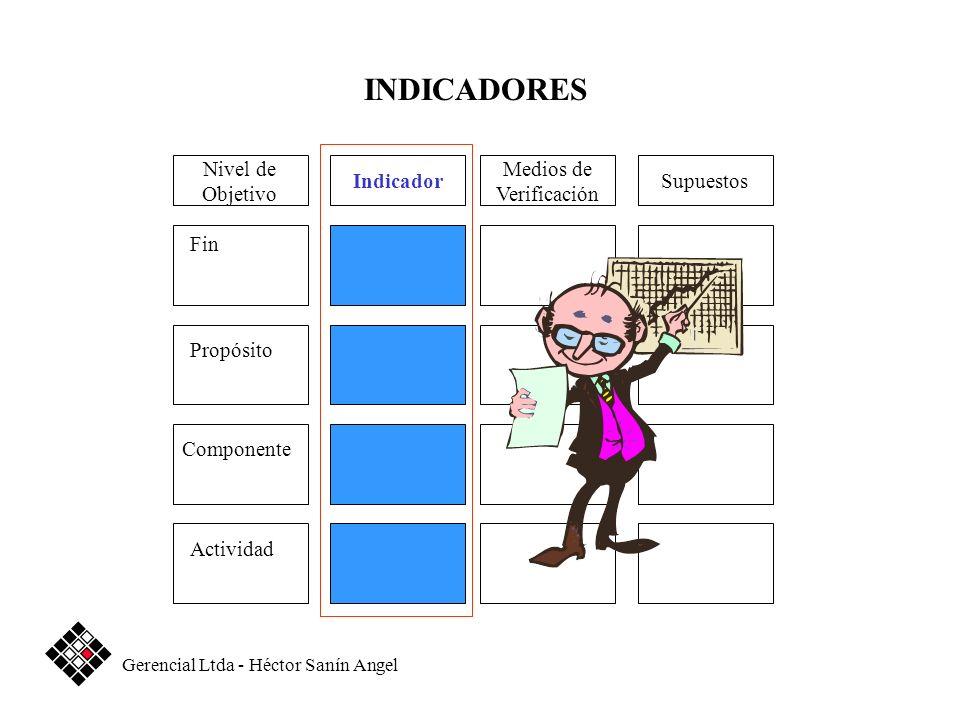 Medios de Verificación SupuestosIndicador Fin Propósito Componente Actividad Nivel de Objetivo INDICADORES Gerencial Ltda - Héctor Sanín Angel