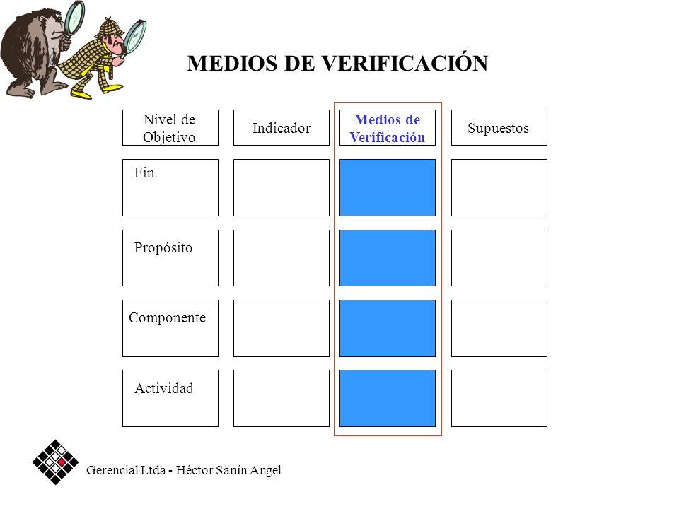 Medios de Verificación SupuestosIndicador Fin Propósito Componente Actividad Nivel de Objetivo MEDIOS DE VERIFICACIÓN Gerencial Ltda - Héctor Sanín An