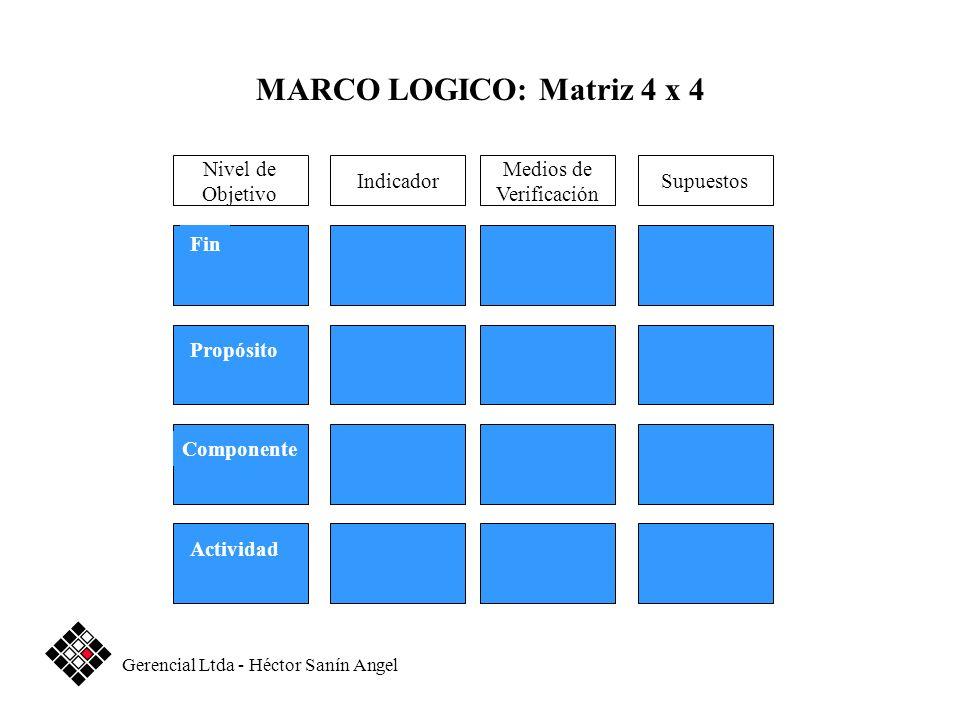 Medios de Verificación SupuestosIndicador Fin Propósito Componente Actividad Nivel de Objetivo MARCO LOGICO: Matriz 4 x 4 Gerencial Ltda - Héctor Saní