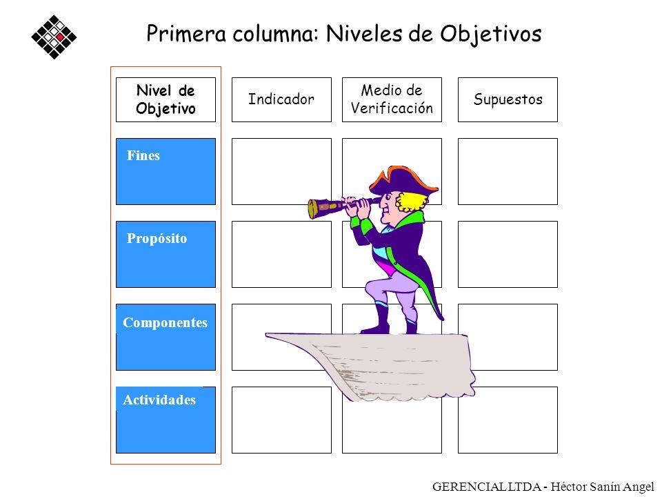 Medio de Verificación SupuestosIndicador Fines Propósito Componentes Actividades Primera columna: Niveles de Objetivos Nivel de Objetivo Sostenibilida
