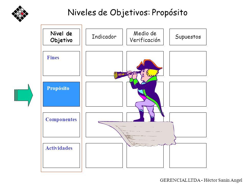 Medios de Verificación SupuestosIndicador Fin Propósito Componente Actividad Nivel de Objetivo SUPUESTOS Gerencial Ltda - Héctor Sanín Angel
