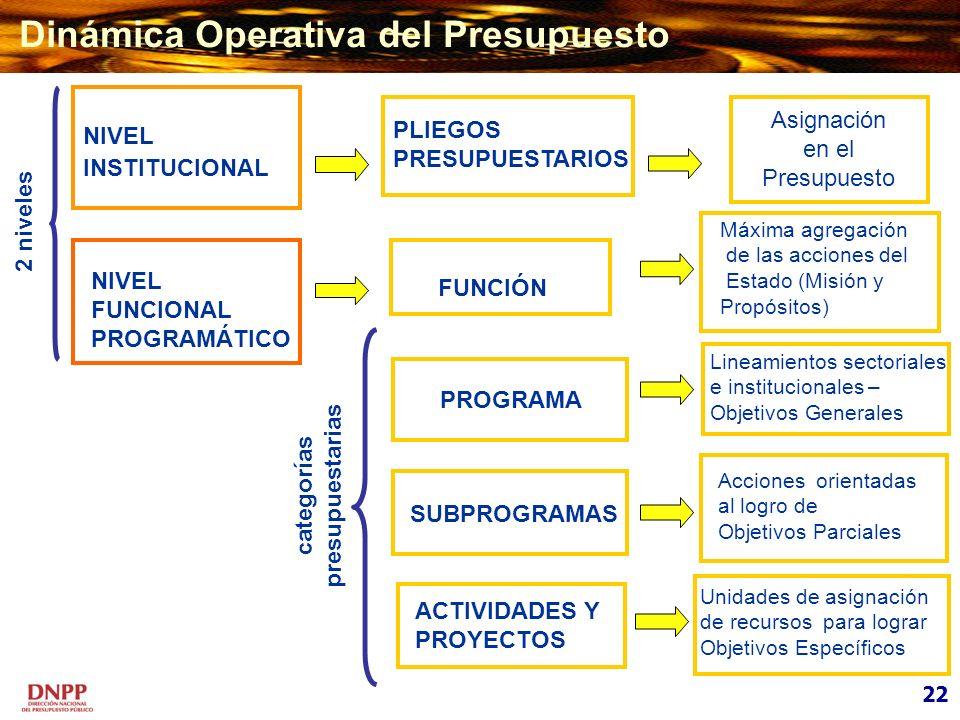 NIVEL INSTITUCIONAL PLIEGOS PRESUPUESTARIOS NIVEL FUNCIONAL PROGRAMÁTICO Asignación en el Presupuesto FUNCIÓN PROGRAMA SUBPROGRAMAS 2 niveles categorí