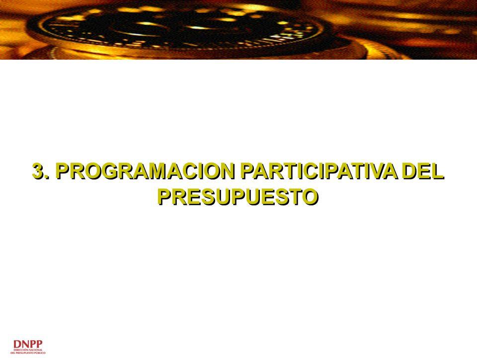 3. PROGRAMACION PARTICIPATIVA DEL PRESUPUESTO