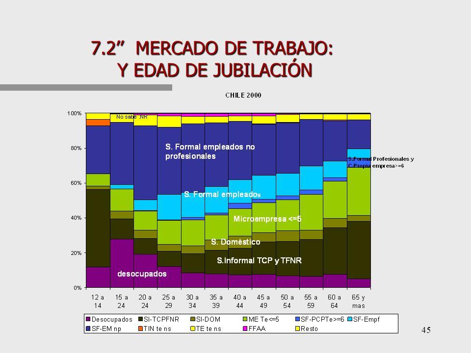 44 7.2 MERCADO DE TRABAJO: HETEROGÉNEO DONDE ES DIFÍCIL DAR COBERTURA A TRAVÉS DE LA NÓMINA SALARIAL