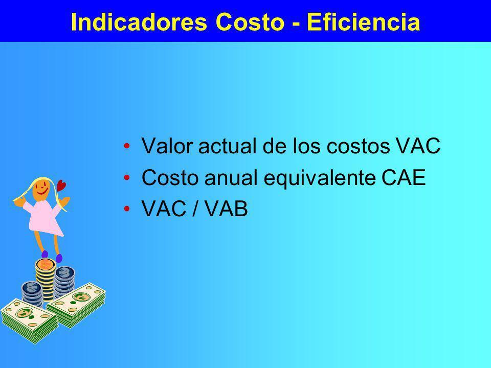 Indicadores Beneficio - Costo VAN TIR Otros criterios –Razón Beneficio/Costo –Período de recuperación del capital –VAN del año 1 – Tasa de rentabilidad imediata