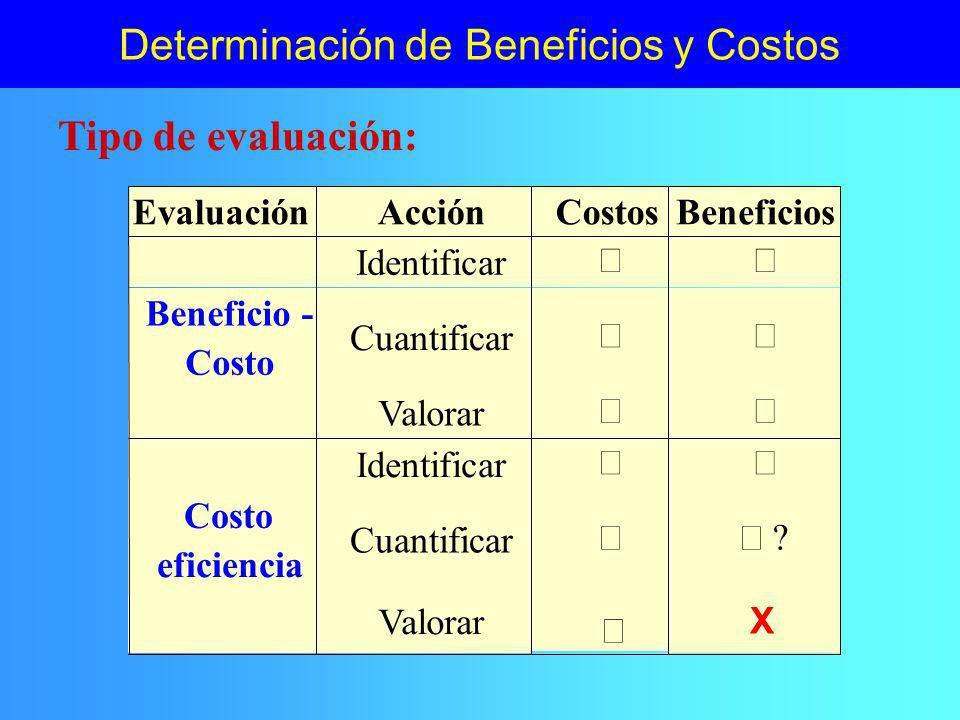 Determinación de Beneficios y Costos Identificación: ¿cuáles.