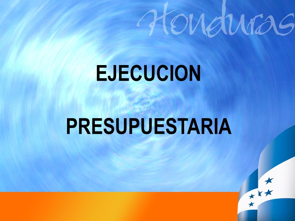 EJECUCION PRESUPUESTARIA