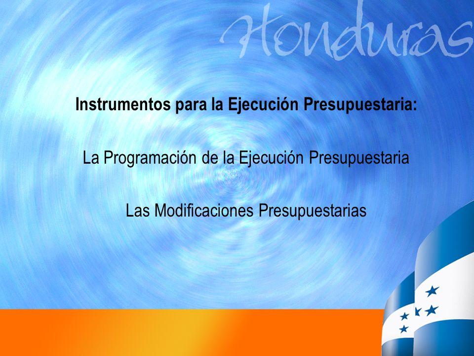 Instrumentos para la Ejecución Presupuestaria: La Programación de la Ejecución Presupuestaria Las Modificaciones Presupuestarias