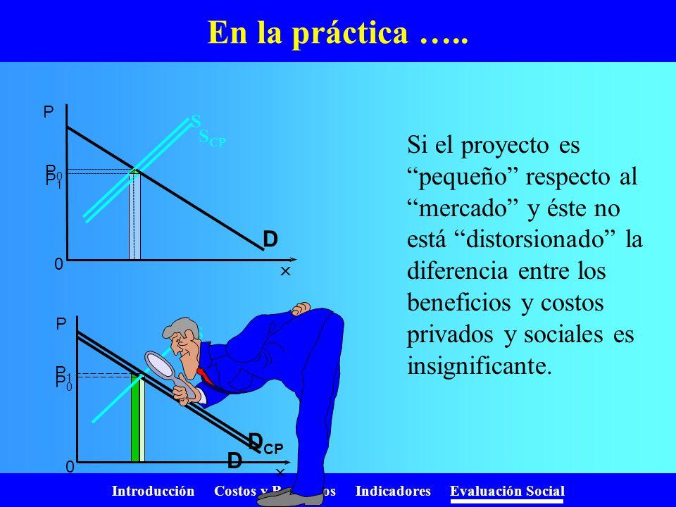 Introducción Costos y Beneficios Indicadores Evaluación Social Costo social de los recursos El proyecto incrementa la demanda por el recurso de D 0 a