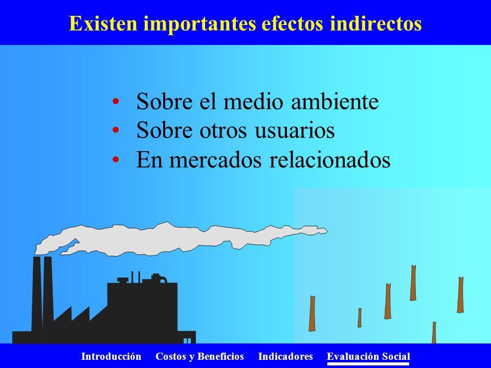 Introducción Costos y Beneficios Indicadores Evaluación Social No hay mercado del bien Estimamos un precio utilizando: –Precios hedónicos –Valoración