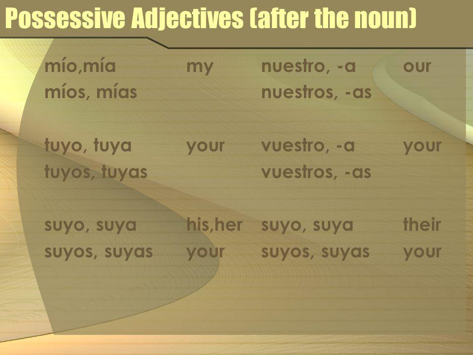 Possessive Adjectives (after the noun) mío,míamy míos, mías tuyo, tuyayour tuyos, tuyas suyo, suyahis,her suyos, suyasyour nuestro, -aour nuestros, -a