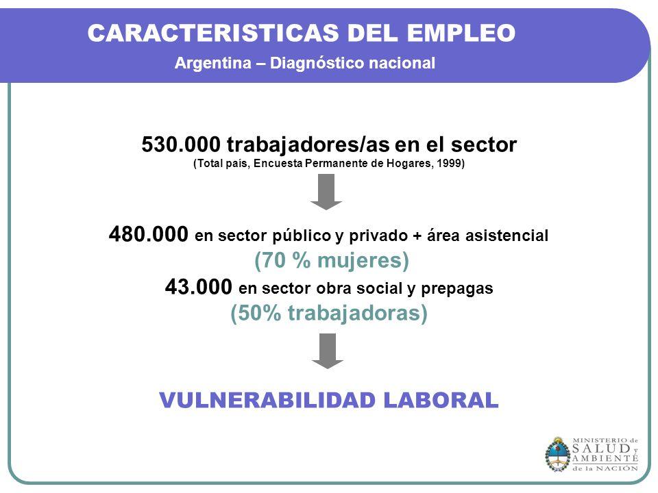 CARACTERISTICAS DEL EMPLEO Argentina – Diagnóstico nacional 530.000 trabajadores/as en el sector (Total país, Encuesta Permanente de Hogares, 1999) 48