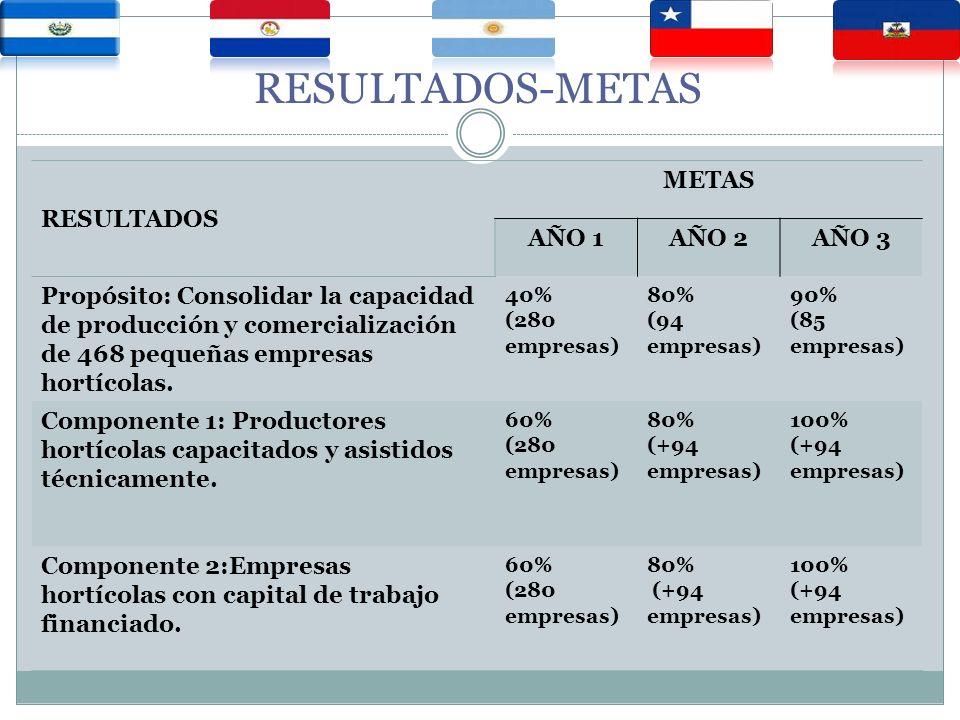 RESULTADOS-METAS RESULTADOS METAS AÑO 1AÑO 2AÑO 3 Propósito: Consolidar la capacidad de producción y comercialización de 468 pequeñas empresas hortícolas.