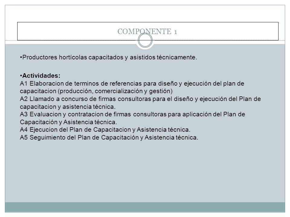 COMPONENTE 1 Productores hortícolas capacitados y asistidos técnicamente.