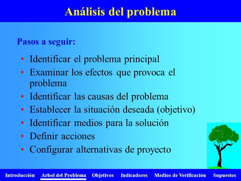 Introducción Arbol del Problema Objetivos Indicadores Medios de Verificación Supuestos Análisis del problema Identificar el problema principal Examina